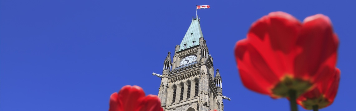 Canadian Government Apps and IT Solutions